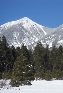 Flagstaff has snowy winters with skiing available at the Arizona Snowbowl ski slopes. This is a beautiful picture of the San Francisco Peaks and surrounding forest covered in snow.